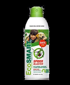 Ecosmart Spider Blaster by BugsStop